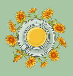Cup of calendula tea vector