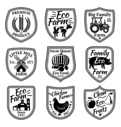 Farm labels set With fruits vegetables vector image