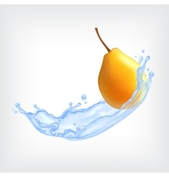 Pear with water vector image vector image