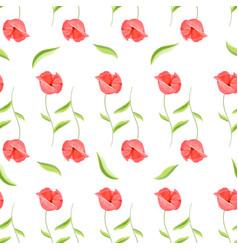 red poppy flower romantic pattern vector image vector image