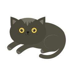 Cute lying gray cartoon cat with moustache whisker vector
