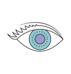 eye with eyelashes in color section silhouette vector image