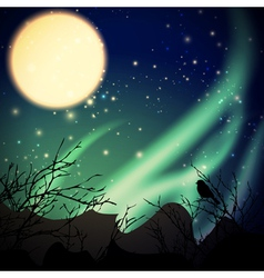 night with northern lights vector image vector image