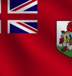Bermuda flag vector