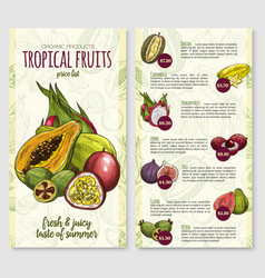 price list for exotic fresh tropical fruits vector image