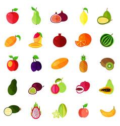 Food fruits like apple and pear kiwi and orange vector