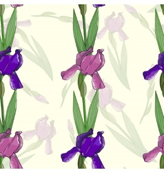 Seamless pattern with irises flowers vector