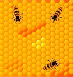 Honeycomb vector