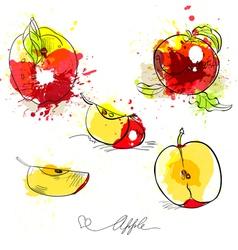 sketch of apple vector image