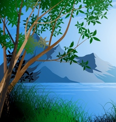 Tree and river scene vector