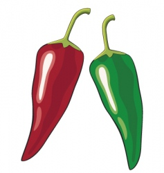 chili vector image