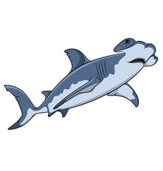 color of the hammerhead shark vector image vector image