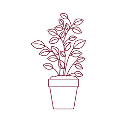 Dark red line contour of plant pot vector