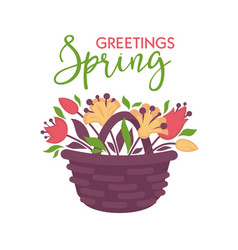 spring greeting card with basket of flowers vector image vector image