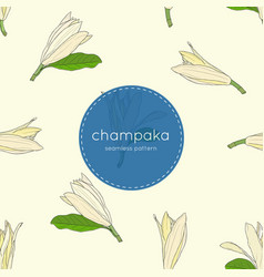 white champaka seamless pattern vector image vector image