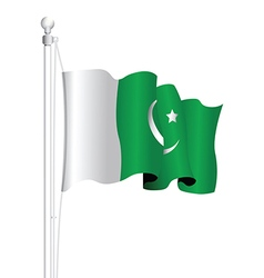 Pakistan flag vector