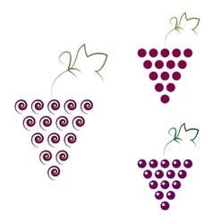 Grapes isolated Grapes icon vector image vector image