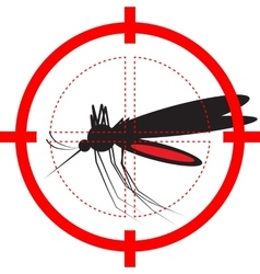 Target on mosquito vector