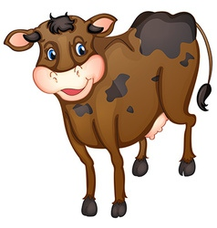 Brown cow vector image