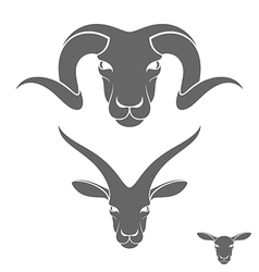 Ram sheep goat vector