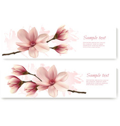 Two beautiful magnolia banners vector