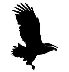 black silhouette of sea-eagle vector image