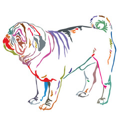 colorful decorative standing portrait of dog pug vector image