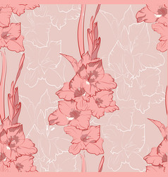 flower seamless pattern from pink gladiolus vector image