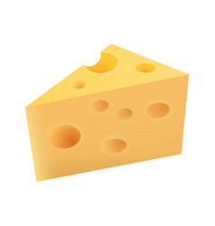 Piece of maasdam cheese vector