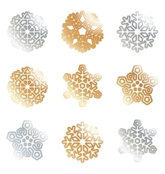 Snowflakes silver gold vector image