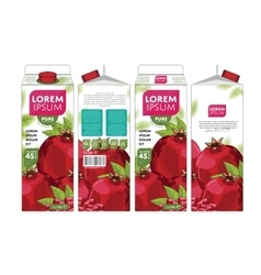 Template packaging design pomegranate juice vector