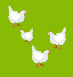 collection of hen isolated vector image
