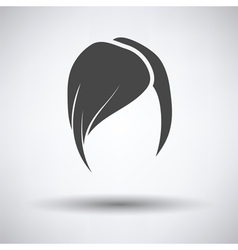 Ladys hairstyle icon vector image vector image