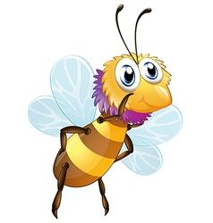A big bumblee bee vector image vector image