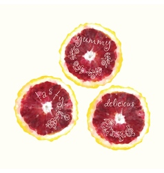 Watercolor orange slice circles hand drawn doodle vector