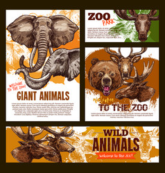 zoo sketch poster wild giant animals vector image vector image