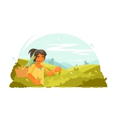 Young boy collects tea vector