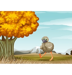 An ostrich near the big tree vector image vector image