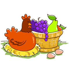 fruit basket and hen vector image vector image