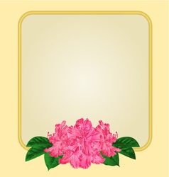 Golden frame with pink rhododendron greeting card vector