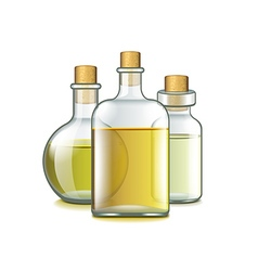 Spa oils isolated on white vector image vector image