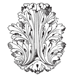 Style of louis xvi leaf has a general vector