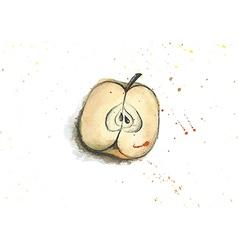 A watercolor apple vector