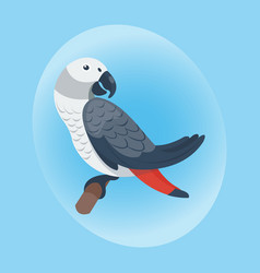Cartoon tropical parrot wild animal bird vector