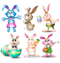 Rabbits vector image