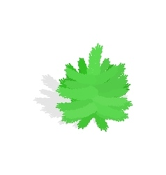 Small christmas tree icon isometric 3d style vector