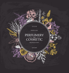 Vintage perfumery and cosmetics set vector