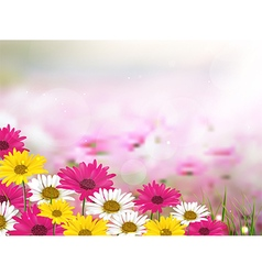 Beautiful flower background vector image vector image