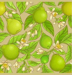 bergamot pattern vector image vector image