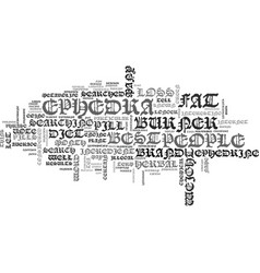 Best fat burner text word cloud concept vector